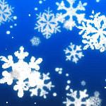 Winter snow brushes