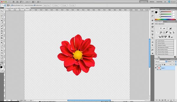 Photoshop fractals